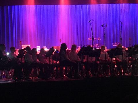 Vel gjennomført Kjendiskonsert: Stemningsfullt på scenen mens Chris fremførte sine sanger